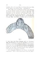 หน้า 208