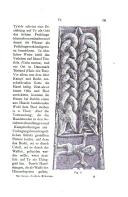 หน้า 241