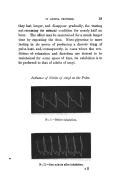 หน้า 19