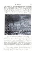 หน้า 311