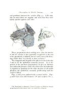 หน้า 131