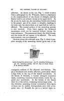 หน้า 46