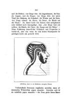 หน้า 240