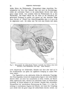 หน้า 26