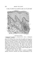 หน้า 248